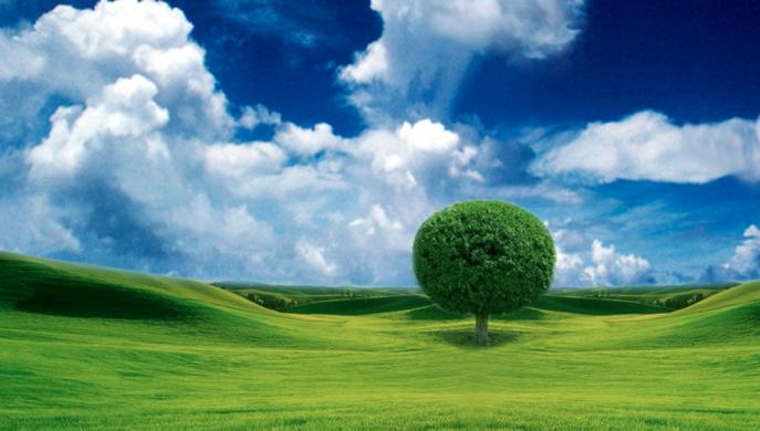 Prog res blog l importanza del verde in citt - Immagini da colorare della natura ...